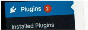 What is a plug-in